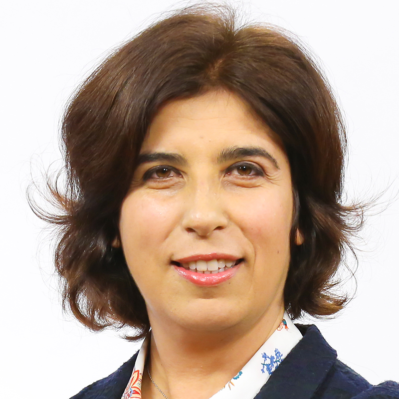Photo of Teresa Mendes Flores